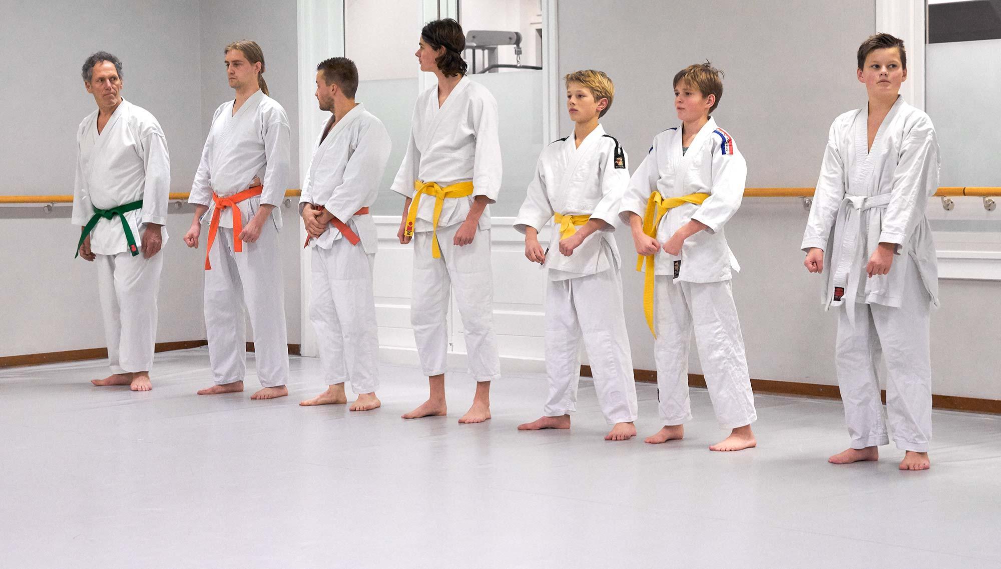 karate 9-15 jaar frits van der werff hoorn