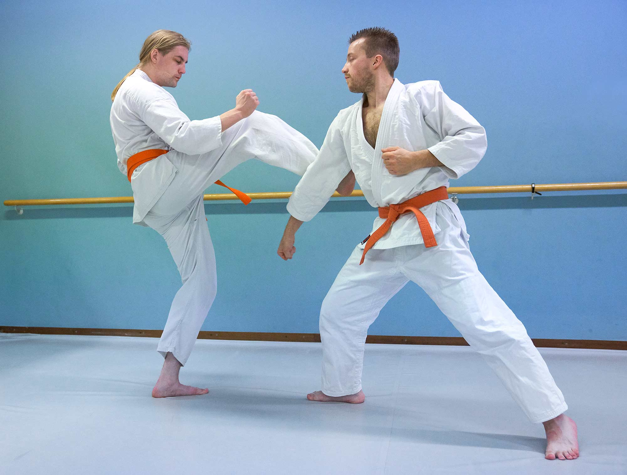 karate frits van der werff